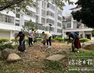 """凤山镇启动爱国卫生""""7个专项行动"""""""